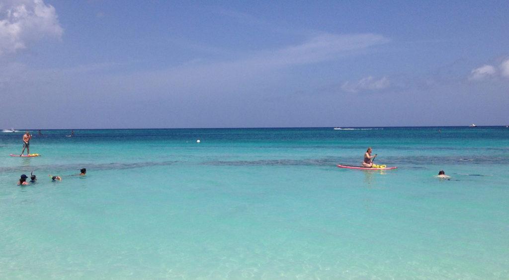 Cayman_Banner1