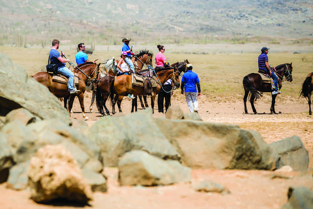 Best activities and watersports to do on Aruba - Horseback riding on Aruba