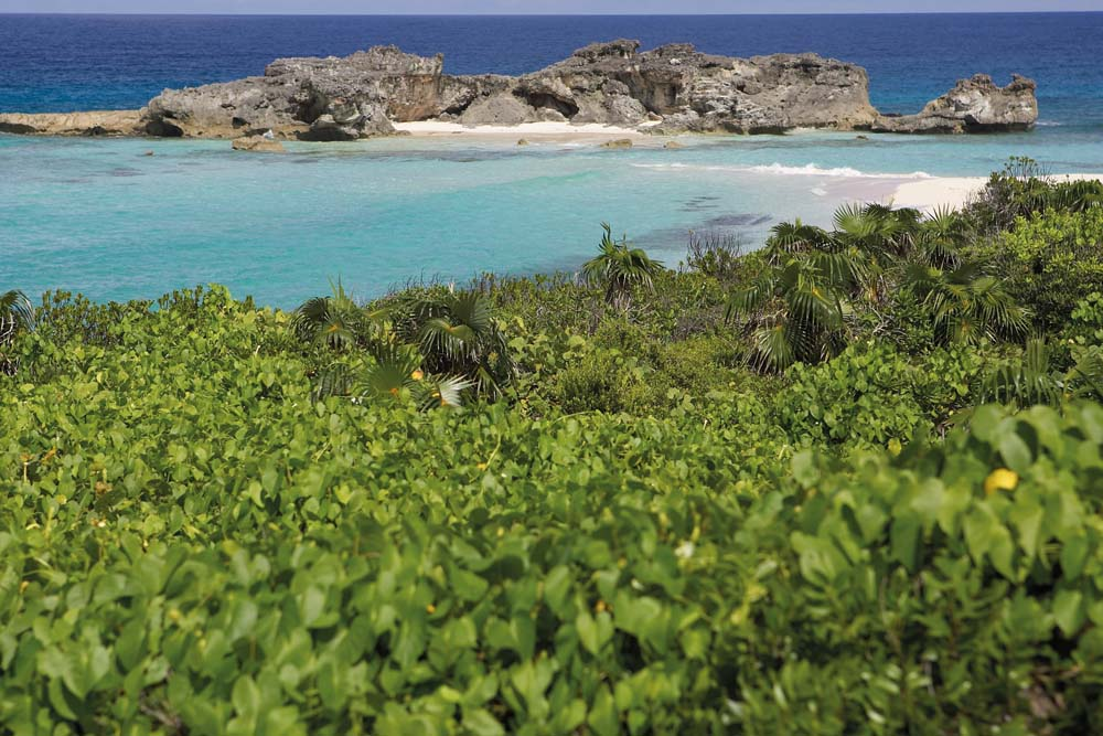The 10 Best Things To Do On Turks And Caicos Islands