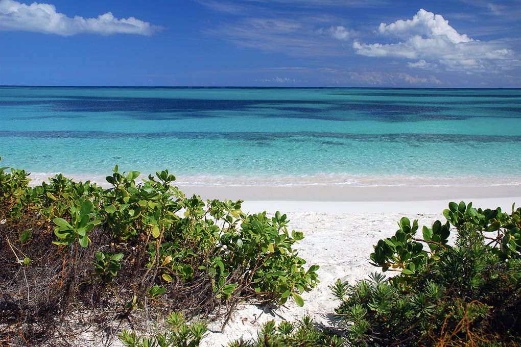 Ultimate travel + vacation guide to South Caicos