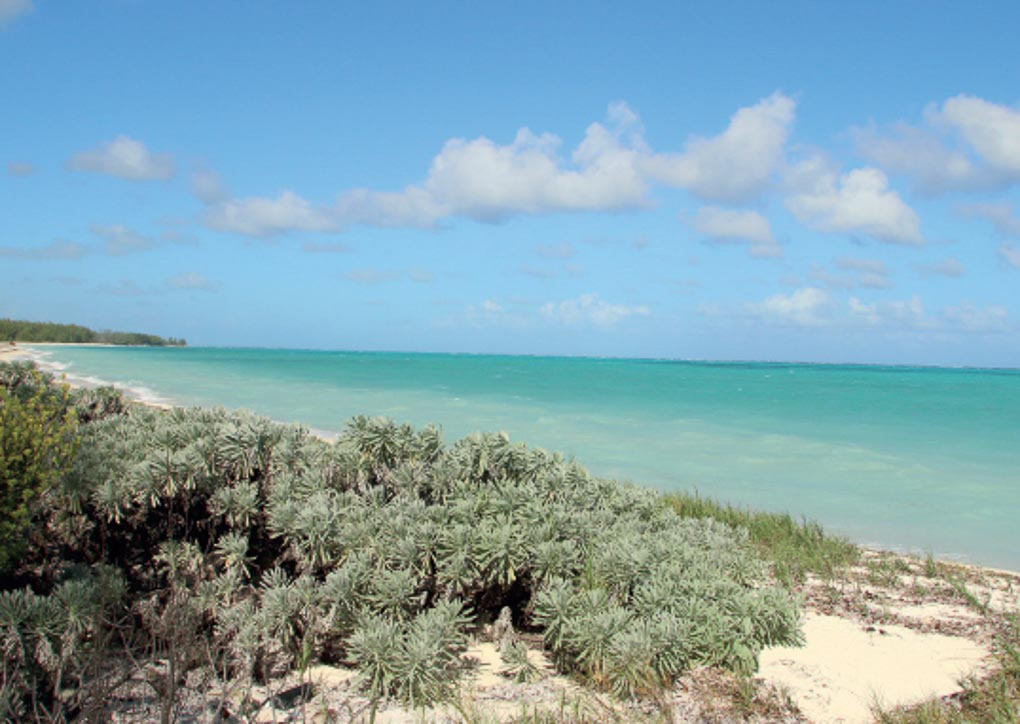 Ultimate travel guide to North and Middle Caicos (3 of 11)