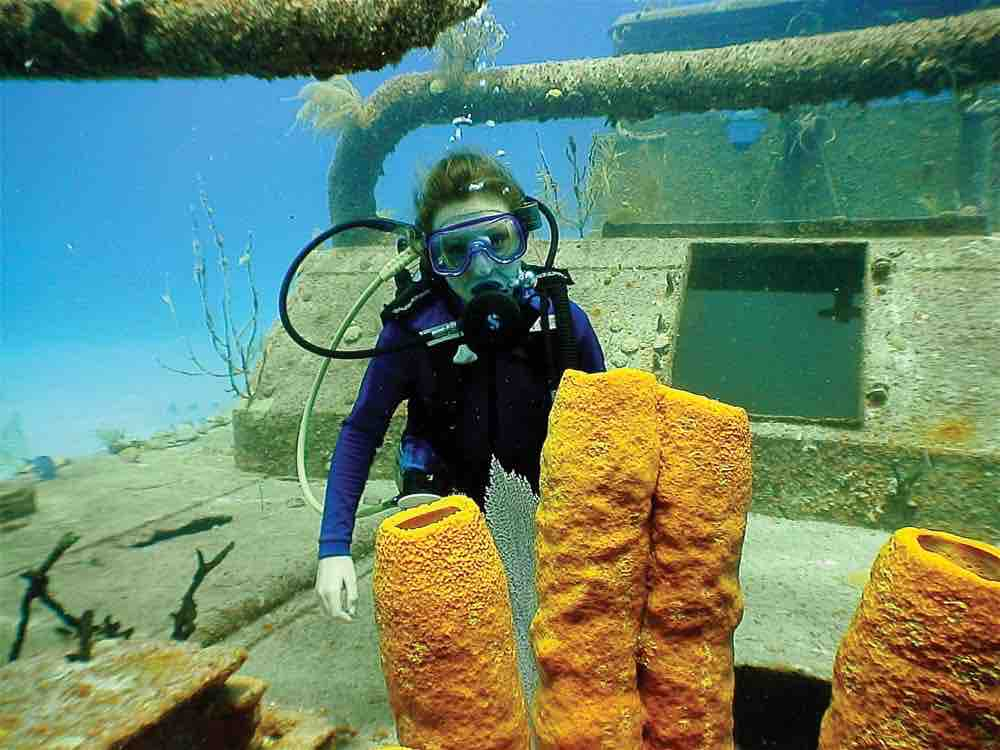 Diving Cayman Islands