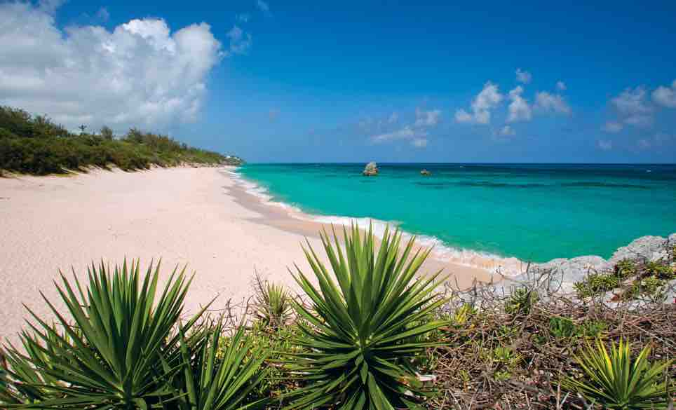 Travel guide to Bermuda