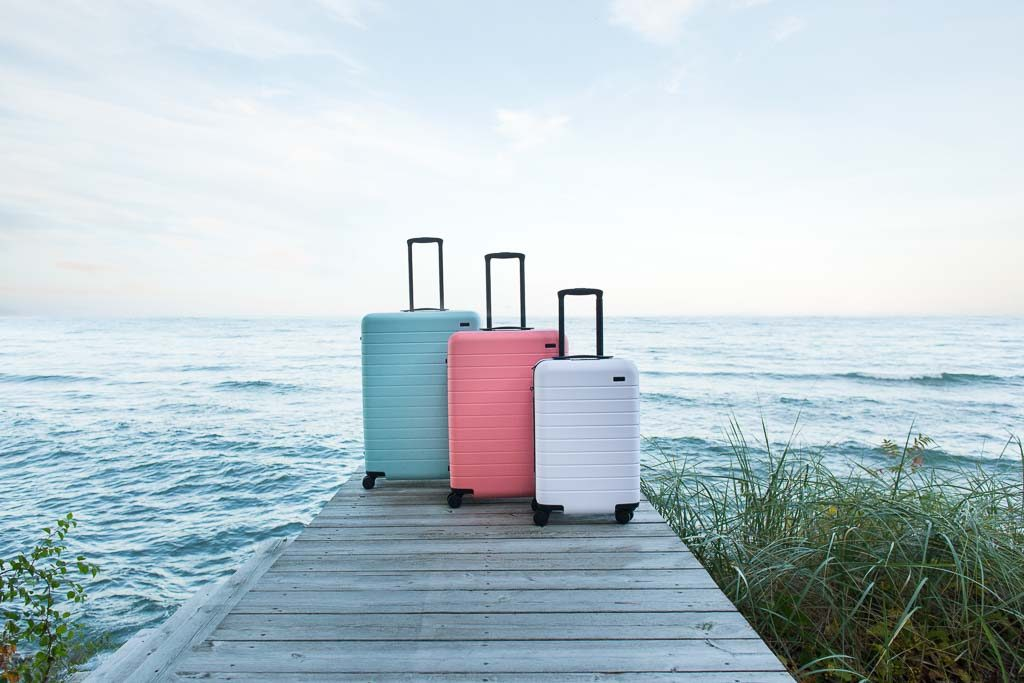 Most wanted: Away x Gray Malin luggage