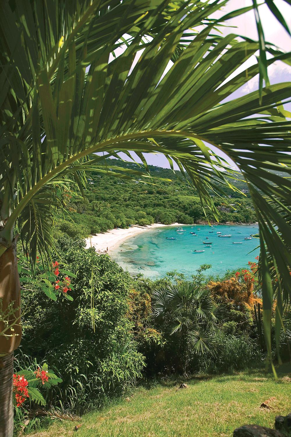 Hull Bay St Croix US Virgin Islands