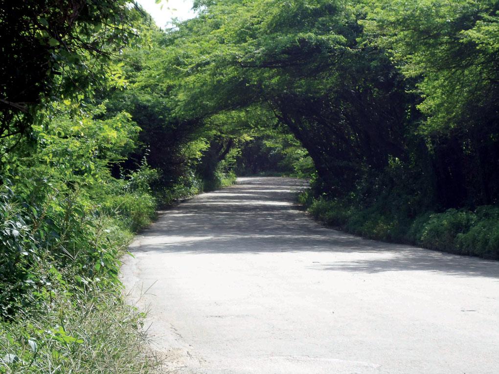 Things to do in Aruba Frenchman's Pass