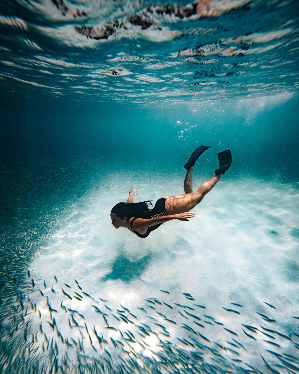 David Troeger | Aruba